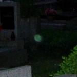 Zelený orb - detail