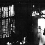 Dívka v hořícím domě 1